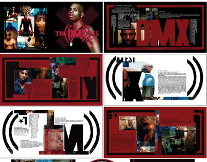 """DMX 'The X Files"""" greatest hits music packaging"""