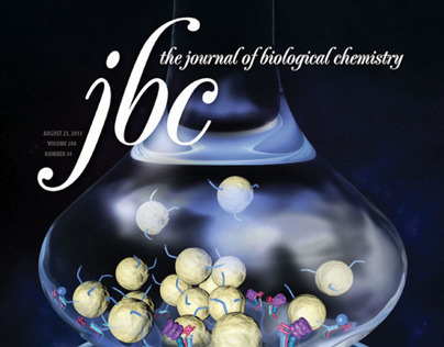 Cover Journal of Biological Chemistry