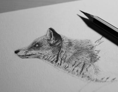 Portrait of a fox II