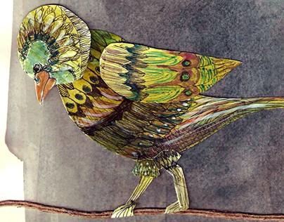 O Pássaro das Cores