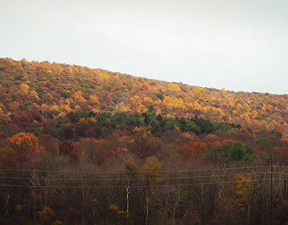 Fall Foliage in Pennsylvania