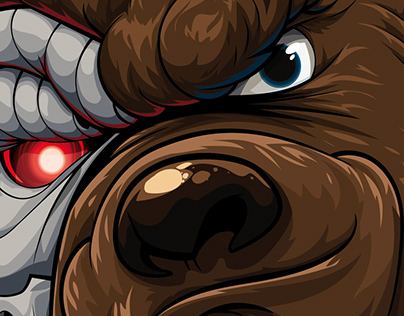 Bear Wrap