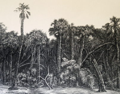 South Carolina Coastal Lithograph Project