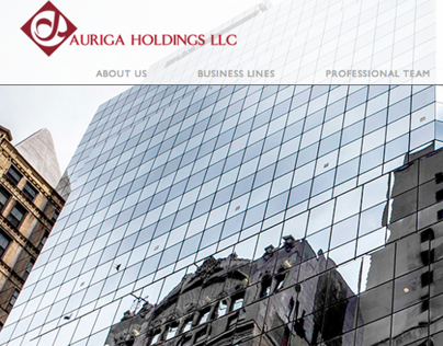 AURIGA HOLDINGS LLC Website