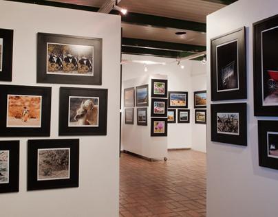 EXPOSIÇÃO DE FOTOGRAFIAS | Expedição Fotogr. Patagônia