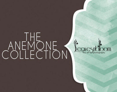 The Anemone Collection