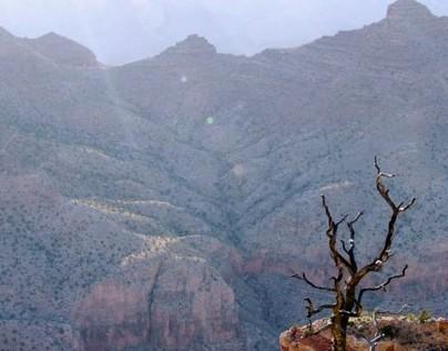 Photographs-Arizona/Utah