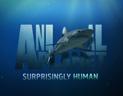 Animal Planet rebrand