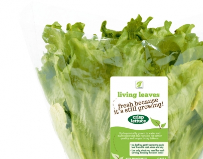 Living Leaves exclusive for Shoprite Checkers