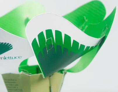 Hydroponic lettuce packaging