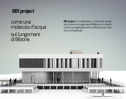 BB1 project