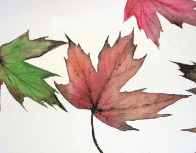 Freshly painted: autumn leaves