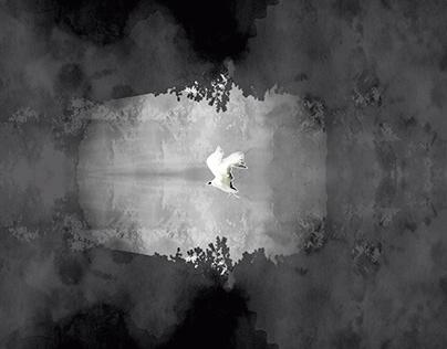 Frames Cortometraje ''Kalfv Pewma''