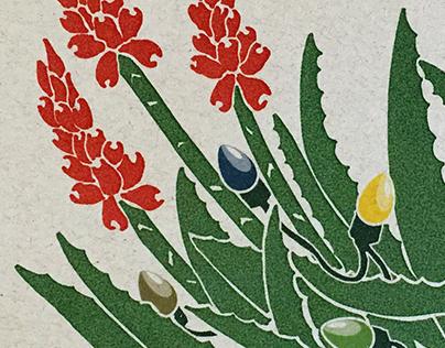 Blooming Aloe Holiday Card