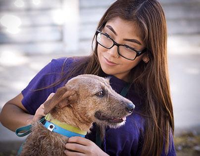 The Animal Foundation Volunteer Program