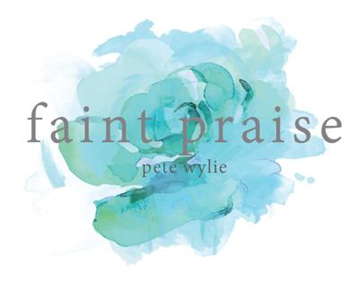 Faint Praise