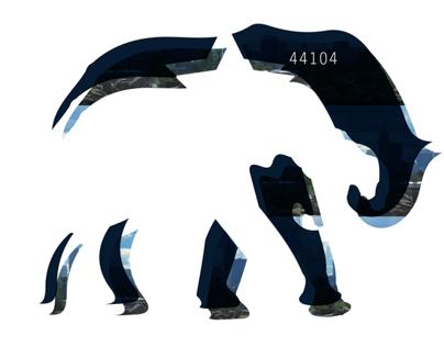 """""""44104"""" by Elephants in Motion"""
