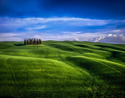 The harmonious landscape; wandering around Tuscany.