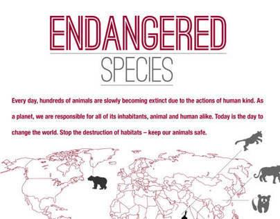 WWF Endangered Species Infographic