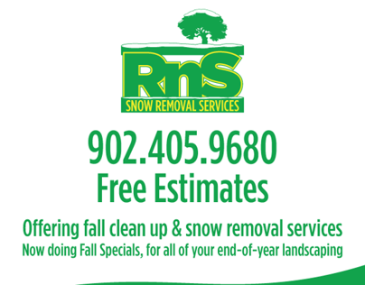 RnS Snow Removal Flyer