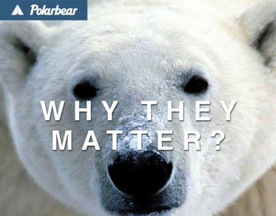 WHY THEY MATTER?