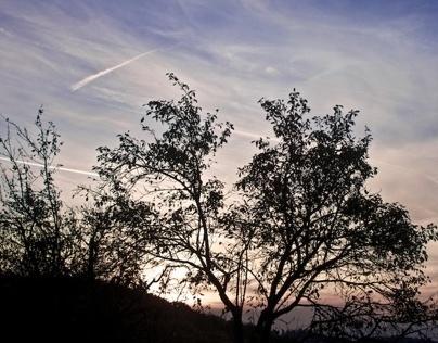 various sunset