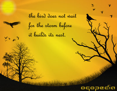 QUOTES - The Bird