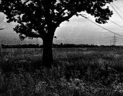 Random Bits of Old Photography