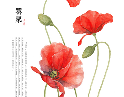 water colour flower