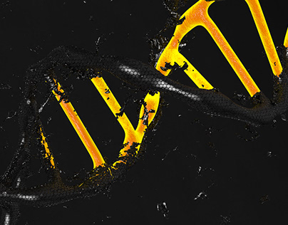 ADN 3D