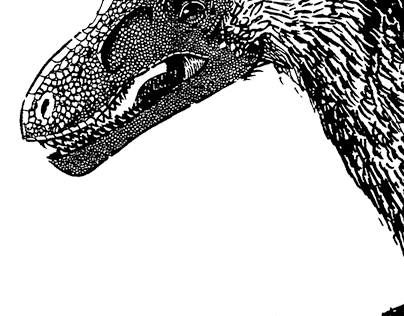 Dinosaurs for Darwin