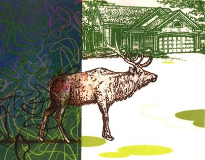 Deer Greenhouse