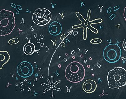 Editorial illustration – immune cells