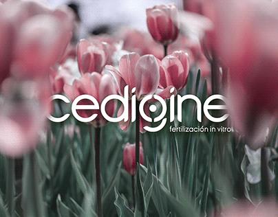 cedigine™   fertilización in vitro