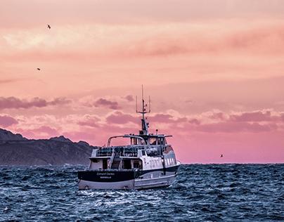 France ⏤ Marseille