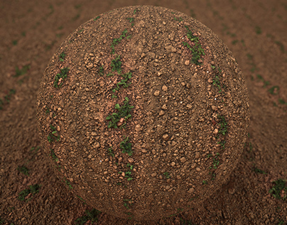 Photoscanned PBR material - Plant & Soil