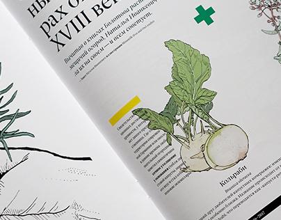 Goats and Veggies illustrations