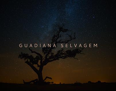 GUADIANA SELVAGEM | Títulos e grafismos