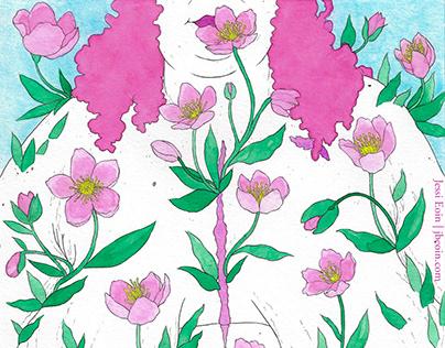 Winter Flower: Hellebore