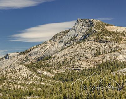 Tresidder Peak