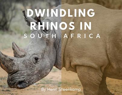 Dwindling Rhinos In South Africa