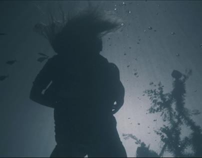 The Dream Fish feature film