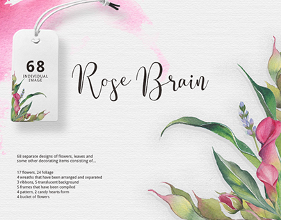 Rose Brain - Watercolor Collections