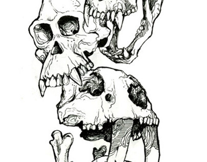 Skulls Compilation