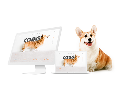 Promotional website Corgi