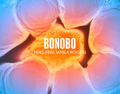 Bonobo - 'Tides' Visualiser