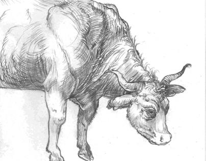 Drawing style: Albrecht Dürer