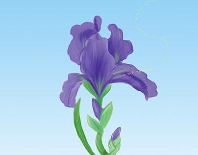 Iris | Digital Painting