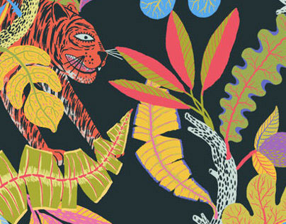 Tigers and Toucans