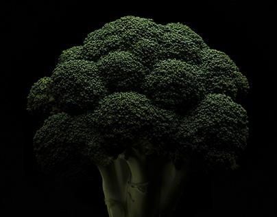 Vegetable Studies